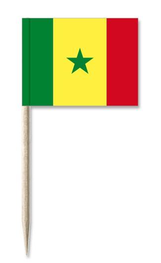 Minifähnchen Senegal