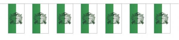 Fahnenketten Schützen grün/weiß