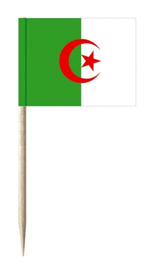 Minifahnen Dekopicker / Käsepicker Algerien
