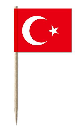Minifahne Türkei