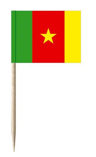Minifahnen Dekopicker / Käsepicker Kamerun